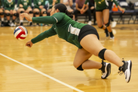 Gallery: Volleyball Auburn @ Heritage